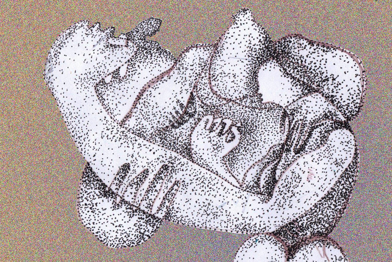 Ilustracja Igi Nowickiej do eseju o prozie Agnieszki Wolny-Hamkało